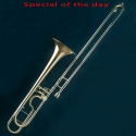 SL-342  Bb/F Tenor Trombone (Model Harrie de Lange)