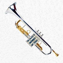TR-604 (ML) Gold Brass