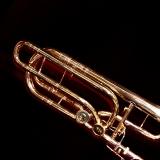 SL-550 Bb/F/D (Eb) Bass Trombone